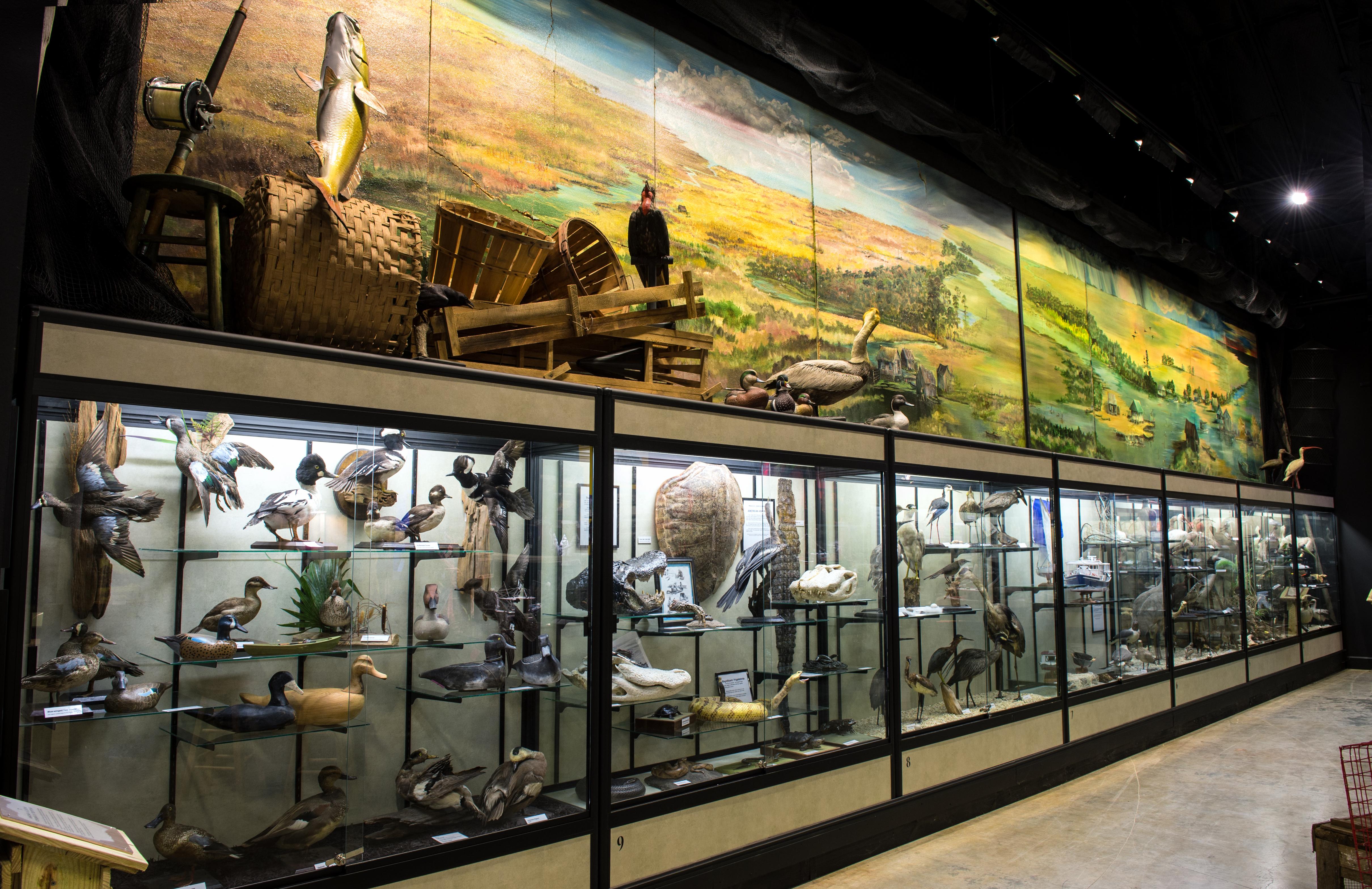 Lafitte's Barataria Museum